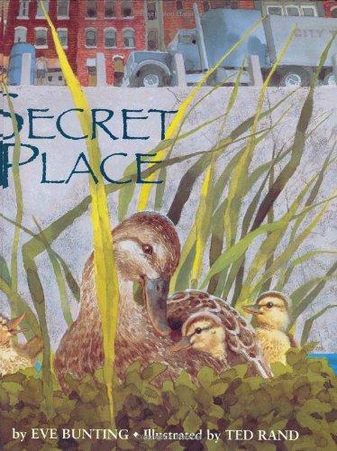9780395643679: Secret Place