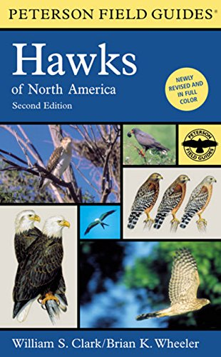 9780395670675: A Field Guide to Hawks of North America (Peterson Field Guides)
