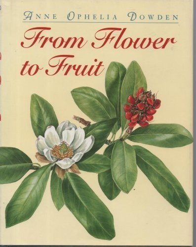 9780395683767: From Flower to Fruit
