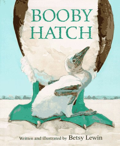 9780395687031: Booby Hatch
