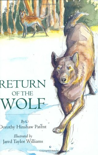 9780395721001: Return of the Wolf