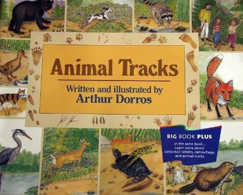 9780395731437: Animal Tracks Teachers Big Book