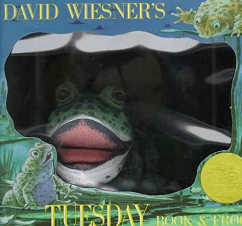 9780395735114: David Wiesner's Tuesday/Book and Frog: Book & Doll Gift Box