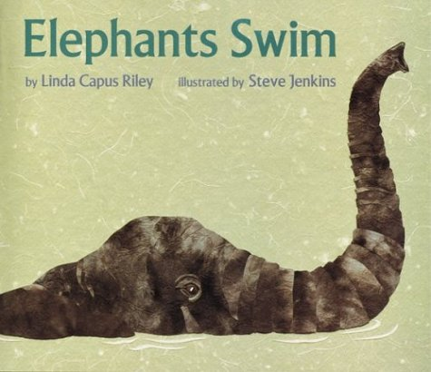 9780395736548: Elephants Swim