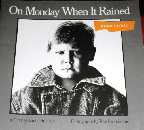 9780395753439: On Monday When It Rained