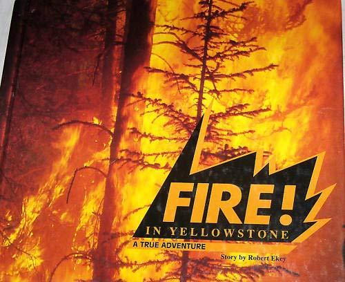 9780395781012: Houghton Mifflin Soar to Success: Fire! Yellowstone Lv 5 FIRE! YELLOWSTONE