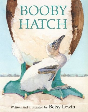9780395845165: Booby Hatch