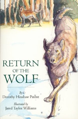 9780395845196: Return of the Wolf