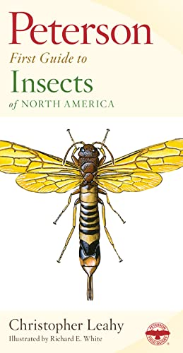 9780395906644: Peterson First Guide to Insects of North America