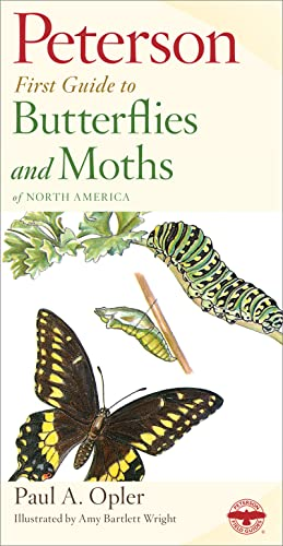 9780395906651: Peterson First Guide to Butterflies and Moths