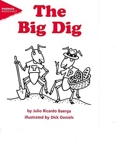 The big dig (Phonics bookshelf): Baerga, Julio Ricardo
