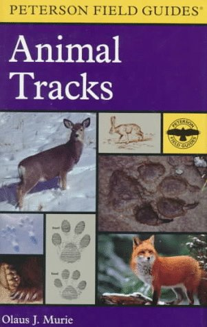 9780395910931: Peterson Field Guide to Animal Tracks: Second Edition (Peterson Field Guides (R) Series)