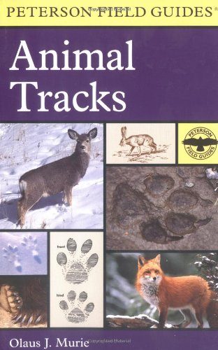 9780395910948: A Field Guide to Animal Tracks (Peterson Field Guides)