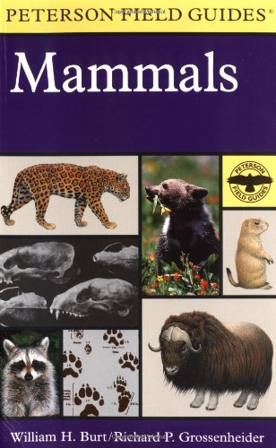 9780395910986: A Field Guide to Mammals: North America north of Mexico (Peterson Field Guide Series)