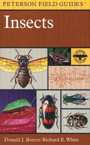 9780395911716: A Field Guide to Insects: America North of Mexico (Peterson Field Guides(R))
