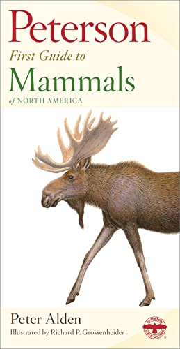 9780395911815: Peterson First Guide to Mammals of North America (Peterson First Guides)
