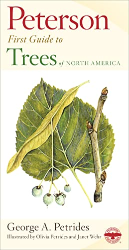 9780395911839: Peterson First Guide to Trees