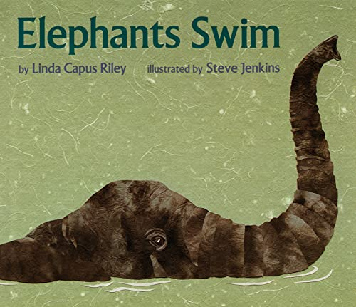 9780395934890: Elephants Swim (Sandpiper Books)