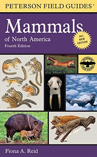 9780395935965: Peterson Field Guide to Mammals of North America