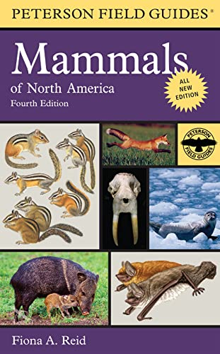 9780395935965: Peterson Field Guide to Mammals of North America: Fourth Edition (Peterson Field Guides)