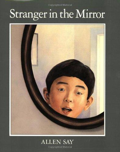 9780395938836: Stranger in the Mirror