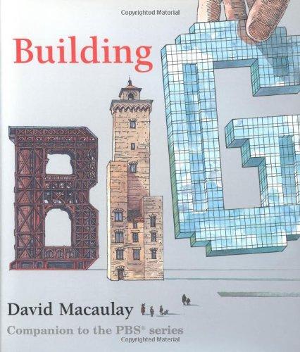 9780395963319: Building Big