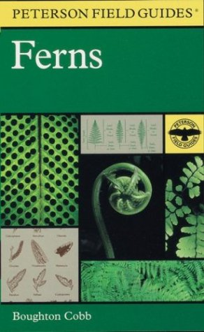 A Field Guide to Ferns and Their: Boughton Cobb