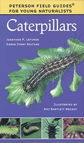 9780395979457: Caterpillars