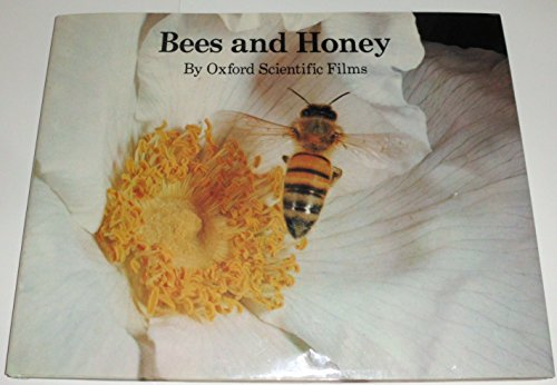 9780399205897: Bees and Honey