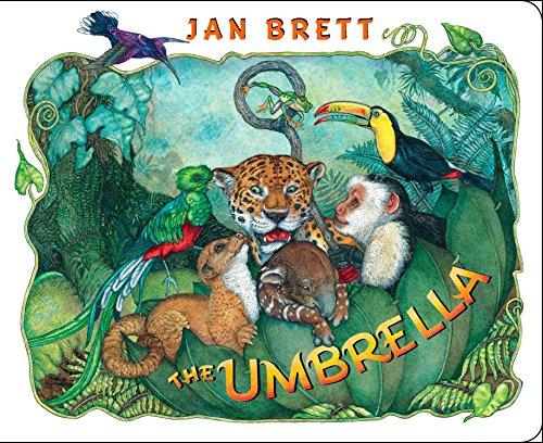 9780399255403: The Umbrella: board book