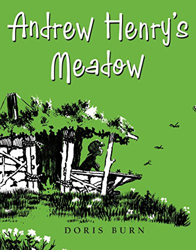 9780399256080: Andrew Henry's Meadow