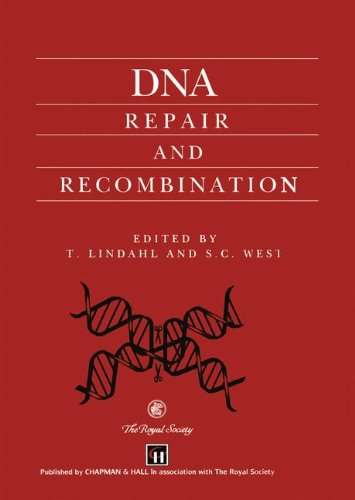 9780412640407: DNA Repair and Recombination