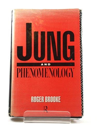 9780415048576: Jung and Phenomenology