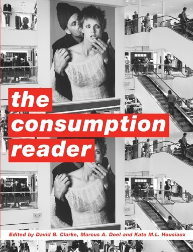 9780415213776: The Consumption Reader