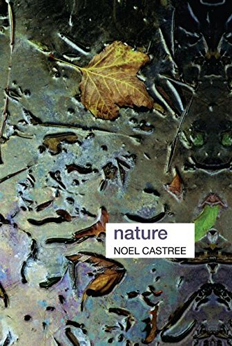 9780415339049: Nature (Key Ideas in Geography)