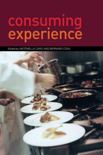 9780415382441: Consuming Experience