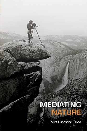 9780415393256: Mediating Nature (International Library of Sociology)