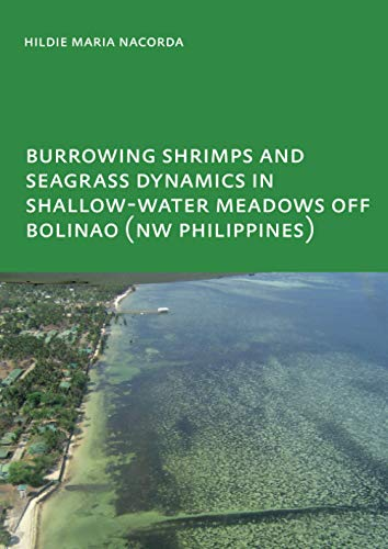 9780415484022: Burrowing Shrimps and Seagrass Dynamics in Shallow-Water Meadows off Bolinao (New Philippines): UNESCO-IHE PhD