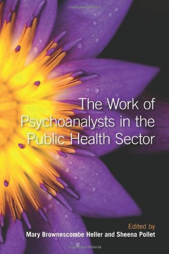 9780415484282: The Work of Psychoanalysts in the Public Health Sector