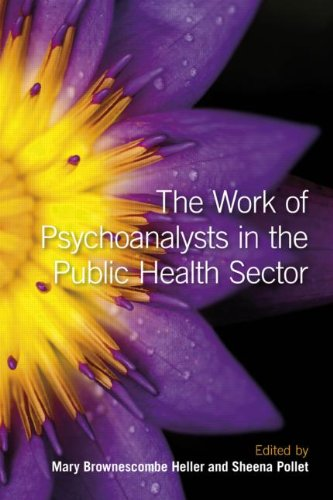 9780415484299: The Work of Psychoanalysts in the Public Health Sector
