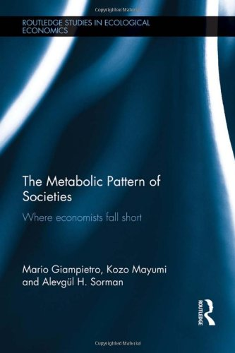 9780415589536: The Metabolic Pattern of Societies: Where Economists Fall Short (Routledge Studies in Ecological Economics)