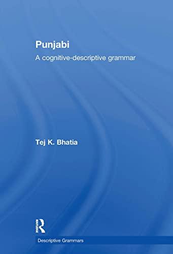 9780415589932: Punjabi (Descriptive Grammars)