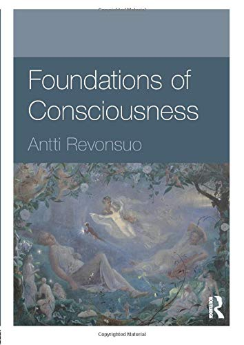 9780415594677: Foundations of Consciousness (Foundations of Psychology)