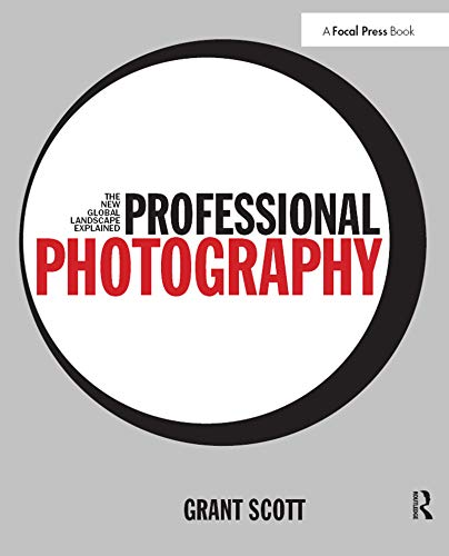 9780415717540: Professional Photography: The New Global Landscape Explained
