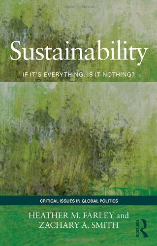 9780415783538: Sustainability: If It's Everything, Is It Nothing? (Critical Issues in Global Politics)
