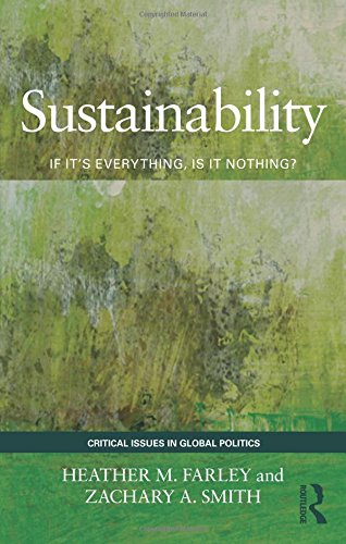 9780415783545: Sustainability: If It's Everything, Is It Nothing? (Critical Issues in Global Politics)
