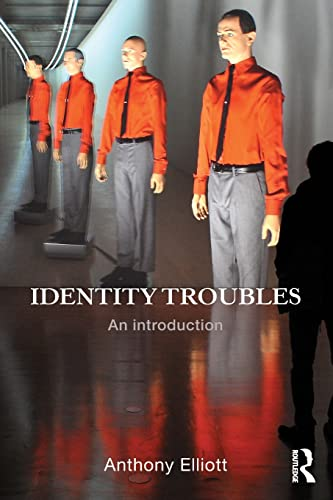 9780415837118: Identity Troubles: An introduction