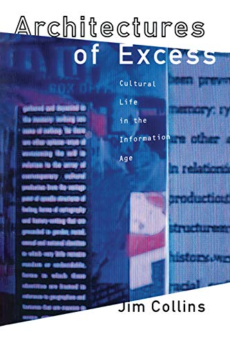 9780415907057: Architectures of Excess: Cultural Life in the Information Age
