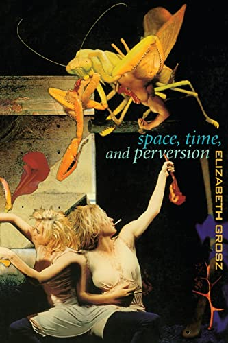9780415911375: Space, Time and Perversion: Essays on the Politics of Bodies: Essays on the Politics of Body