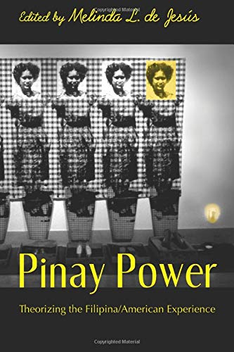 9780415949835: Pinay Power: Peminist Critical Theory